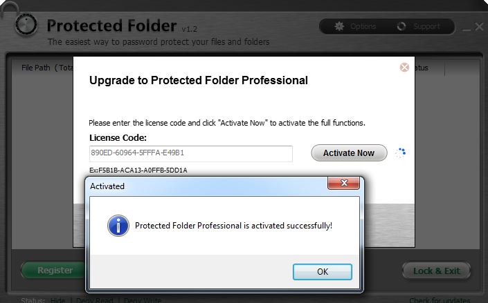 protected folder professional license